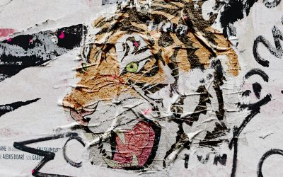 International Tiger Day: 5 bands to roar about